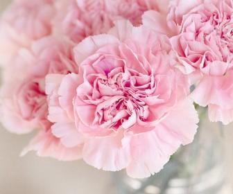 znaczenie snu Sen o kwiatach