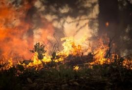 znaczenie snu Sen o pożarze domu