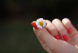 znaczenie snu Sen o paznokciach