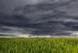 sennik Nadchodząca burza