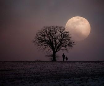znaczenie snu Sen o nocy