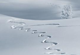 znaczenie snu Sen o śniegu